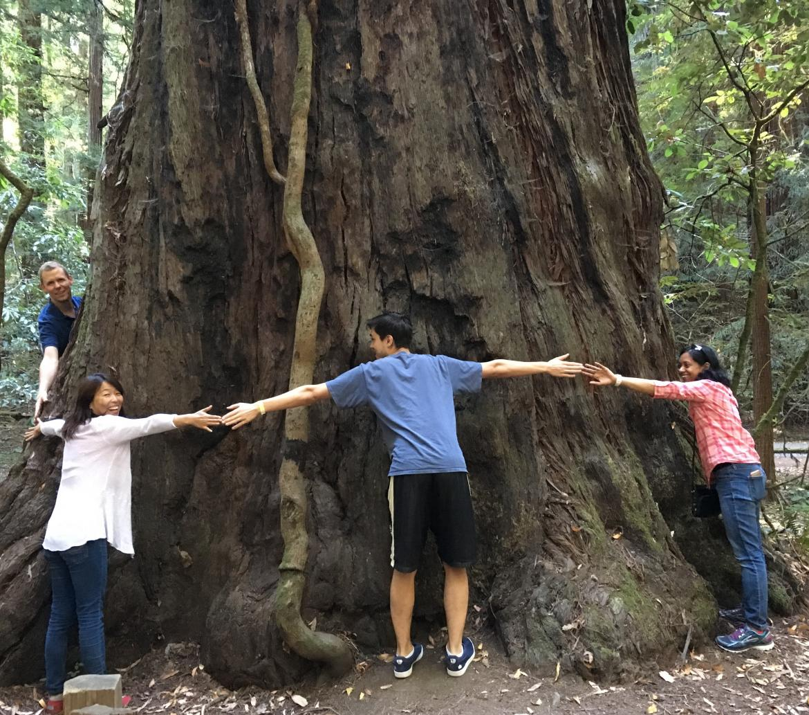 Kampmann lab retreat: Tree hugging