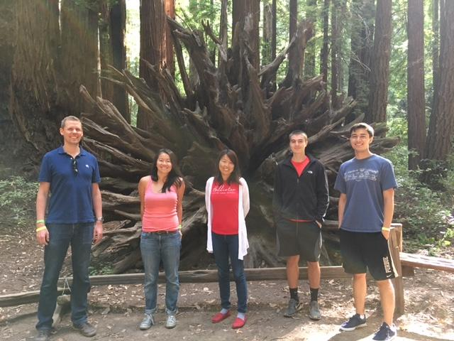 Kampmann lab retreat: Armstrong Redwoods